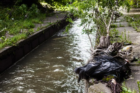 green water: Water pollution. Garbage on the banks of the urban stream.
