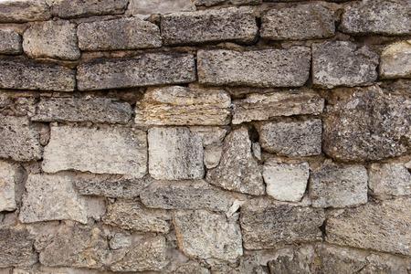 coquina: Masonry of coquina (sedimentary rock composed of broken shells) bricks Stock Photo