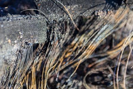 carcass: Metalen karkas van de verbrande auto rubberen band. Dichtbij. Stockfoto
