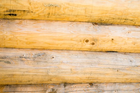 scribe: The wall of the handcrafted scribe fit log house. Wooden surface texture. Stock Photo