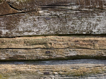 The wall of the old log house. Wooden texture. photo