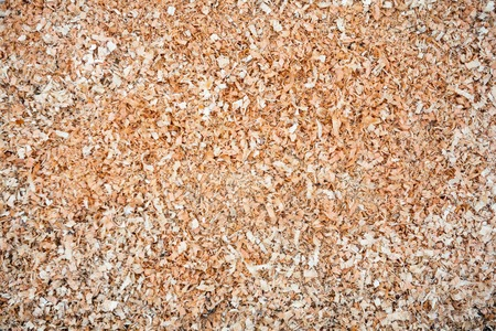 leavings: Pile of wood sawdust for background or texture