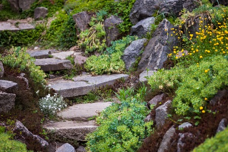 garden design: Stony stairs in the green blooming garden.