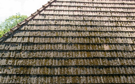 discolored: The old discolored roof with moss-grown tiles.