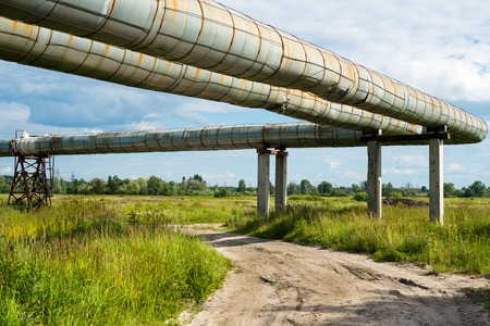 elevated: Elevated section of the pipelines above the dirt road