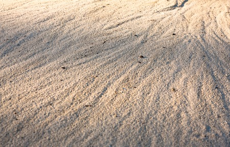 currents: Sand surface after the rain with the visible traces of the water currents