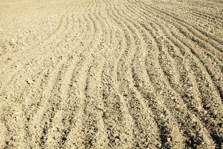 siembra: Campo arado en primavera preparados para la siembra. Foto de archivo