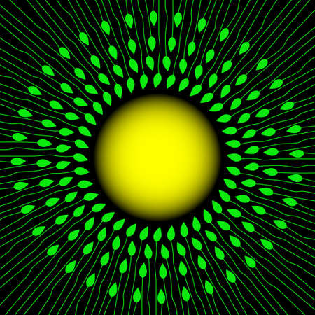 Green stems and leaves around the sun. Spring or summer background. Vector illustration.
