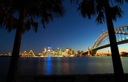 black palms in foreground, famous sydney scenery in background, night shot Stock Photo