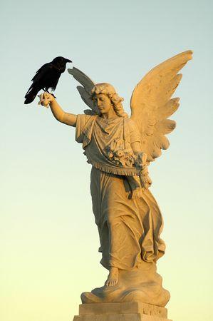 black crow sitting on white angel sculpture,  Stock Photo