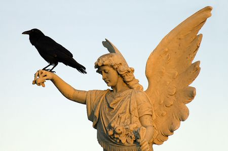 angel headstone: black crow sitting on white angel sculpture,  Stock Photo
