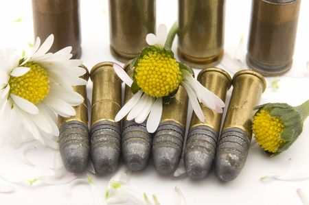 point and shoot: several gun bullets on white background, crushed yellow flowers with white petals