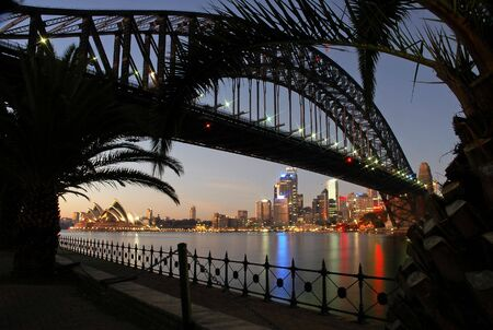 sydney landmarks at night, opera house, cbd and sydney tower, palm silhouettes in foreground
