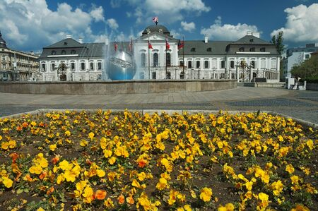 Grassalkovichov palace. yellow flowers in foreground, nice sunny day photo