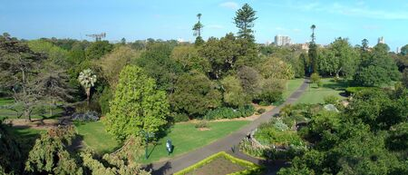 Royal Botanic Gardens panorama photo, Sydney, Australia
