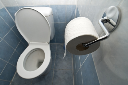 WC interior wide angle photo, toilet paper in foreground Stock Photo - 5835206