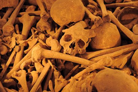 old historic skulls and bones at a mass grave Stock Photo