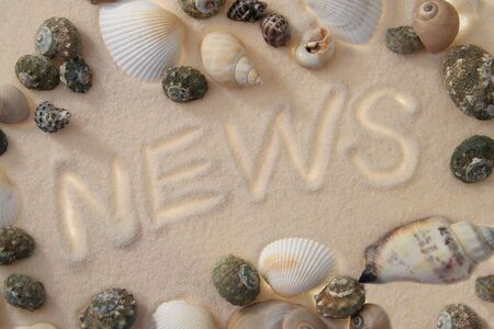 word NEWS written in sand, several sea shells surrounding it photo