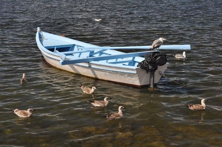 anchoring: small white fishing boat anchoring in shallow water, several sea-gukks Stock Photo