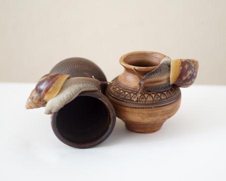 Akhatin snail on a vase