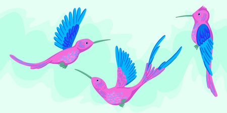 Hummingbird. Tropical bird, fauna. Bright beautiful cute bird. Flap wings, long beak, three different characters. Set of hummingbirds, sits and flies. Illustration