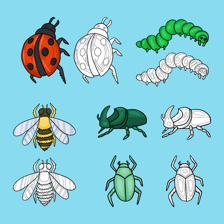 Coloring book with an example in color, drawn illustration of insects. Beetle, ladybug, caterpillar, bee Çizim