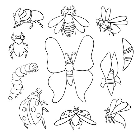 Set of different insects bee, caterpillar, cocoon, butterfly, fly, wasp and beetles. Çizim