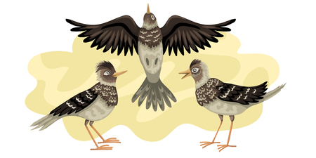 Three birds fly against the background of the sky. Three vector characters in a different pose.