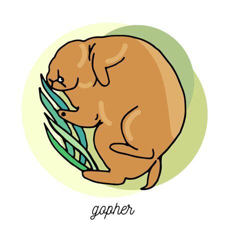 Sleeping gopher in a grass. Vector cartoon illustration Illustration