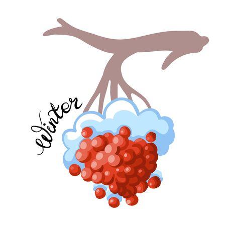 Branch with berries and snow. October. Vector illustration. Illusztráció