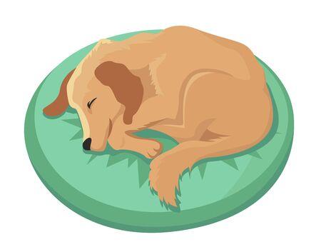 Il cane dorme sui cuscini con i numeri 2018