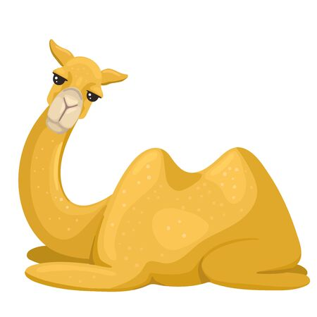 Camel, a desert animal, a mammal for transporting people, lay down to rest, tired and asleep. Vector flat cartoon character illustration on white background.