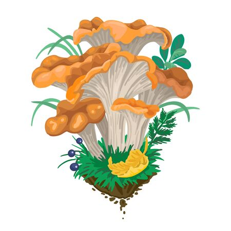 Mycelium, red mushrooms. Fall fruits. On white background. Vector flat illustration