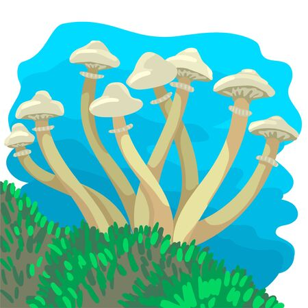 White long mushrooms grow from moss. Vector illustration