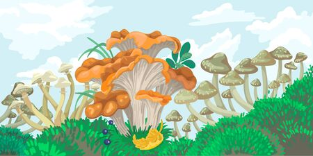 Mushrooms of different types in the green forest, on the sky background. Vector concept Illustration