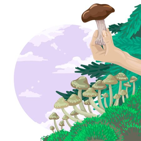 Find an edible mushroom, hold a brown mushroom in your hand. Flyer design, vector illustration 向量圖像