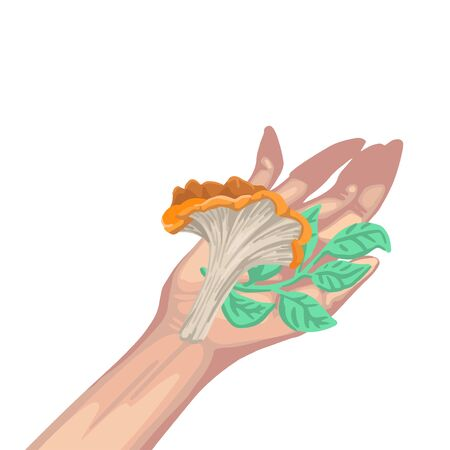 Mushroom and branch with leaves in hand. Vector flat illustration