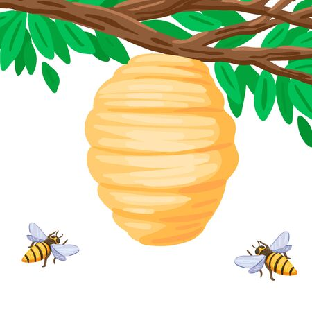 Insects bees collect honey, pollinate a plant, a tree branch with a hive, a beehive house of bees, wild insects in nature. Vector isolated object on white background. Cartoon flat style illustration Ilustrace