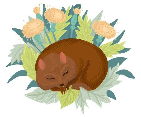 Sleeping hamster in leaves and flowers. Vector illustration. Illustration