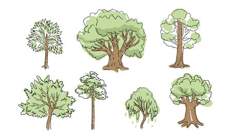 A set of trees. Various trunks and foliage of plants, forest trees. Sketch style, contours and spots, linear handrawing. Illustration on white background.