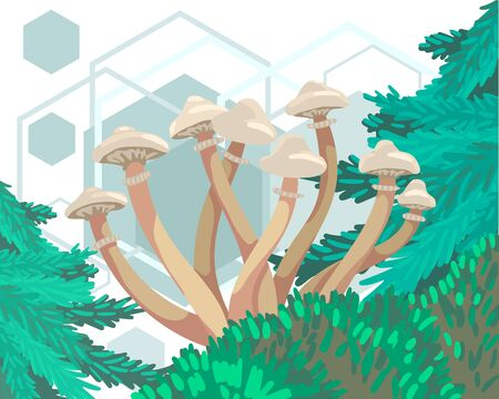 White long mushrooms grow from moss. Geometric shapes on the background. Vector illustration