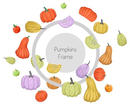Round frame with scattering of colored pumpkins. Vector illustration isolated on white background