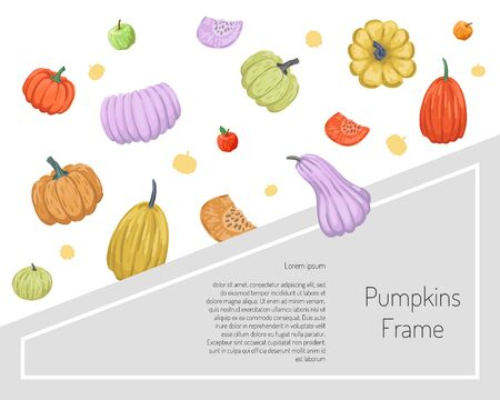 Banner with a scattering of colored pumpkins. Autumn design. Vector illustration