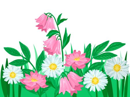 Rosy flowers, summer meadow in nature, blooming daisies and bells, grass around. Vector isolated object on white background. Cartoon flat style illustration