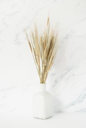 Ramo de espiguillas de cebada en jarrón blanco delante de fondo de mármol pálido
