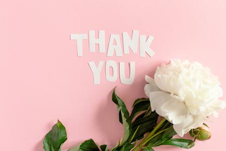 Zitat Danke aus Buchstaben aus Papier ausgeschnitten. Weiße Pfingstrose auf rosa Pastellhintergrund Standard-Bild