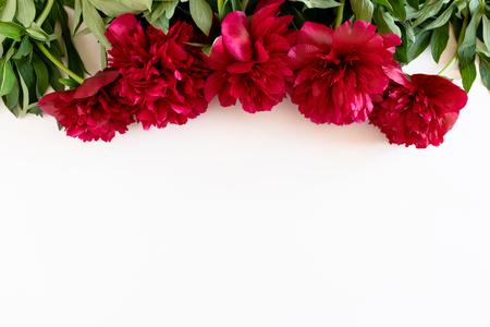 Marco de borde de exuberantes peonías rojas y hojas verdes sobre un fondo blanco. Foto de archivo