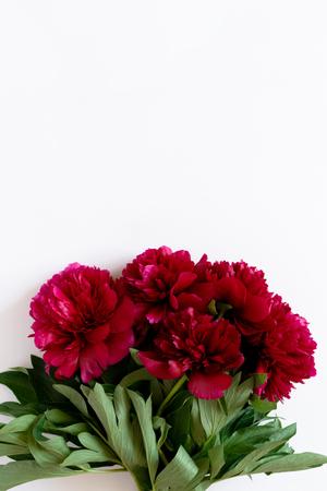 Ramo de peonías rojas sobre un fondo blanco con espacio de copia
