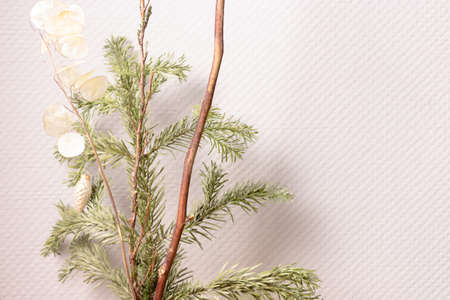 Fir tree branches in front of gray wall. Zero waste Christmas concept with copy space.