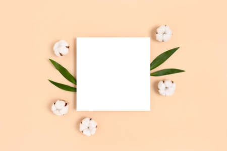 Square paper card mockup with frame made of cotton and green leaves on a beige background. Eco concept.